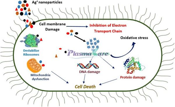 Phuc-he-TSN-Acid-tannic-Nano-Bac-Plasma-la-gi-tac-dung-02